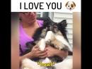 Подумаешь там, для собаки легко сказать Я люблю тебя!