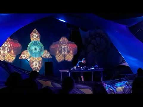 Part of my Cosmicleaf Set in Samsara 2018 Hungary
