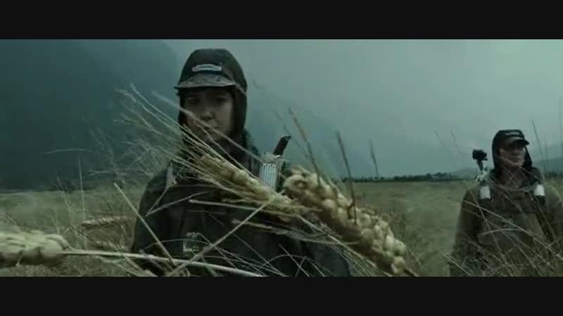 ЕТА пшеница