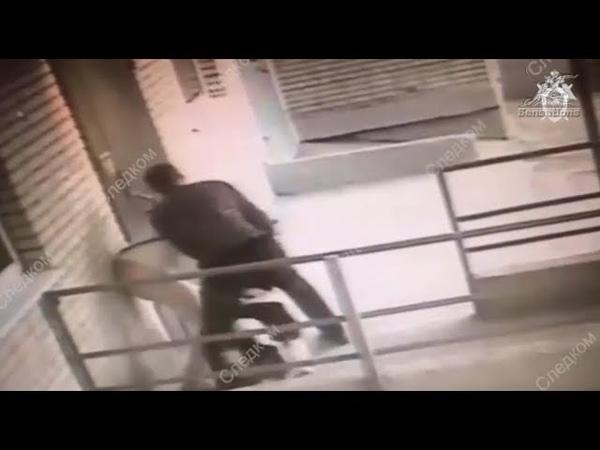 Пес отбил свою хозяйку от грабителя с ножом