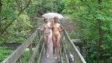 Beauties on the bridges of New Mills - 4K