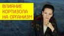 Влияние кортизола на организм Как увеличить или уменьшить кортизол Галина Гроссманн