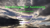 Terry Oldfield - 2. Footprints in the Forest Soundscapes for Awakening