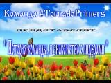 Знакомство с командой #TornadoPrimers