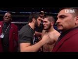 Лунтик -UFC229-