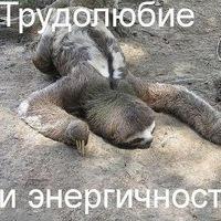 Анкета Руслан Русланыч