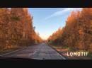 Дорога в Осень 🍂 🍁🍂