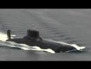 Chyornyj gigant porazil otdyhayushhih na Baltijskom more