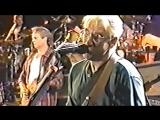 Eagles - Rocky Mountain Way - live at Buffalo 1994