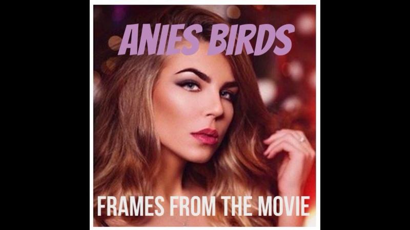 Anies birds. frames from the movie. single