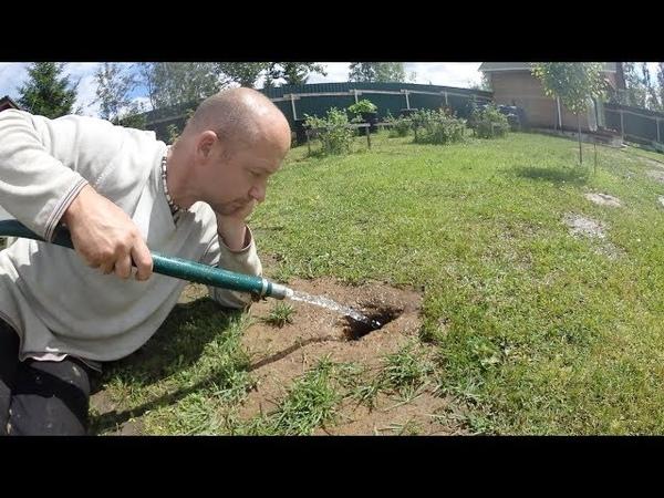 Проверяю способ Вымывание кротов с участка водой ghjdthz cgjcj dsvsdfybt rhjnjd c exfcnrf djljq