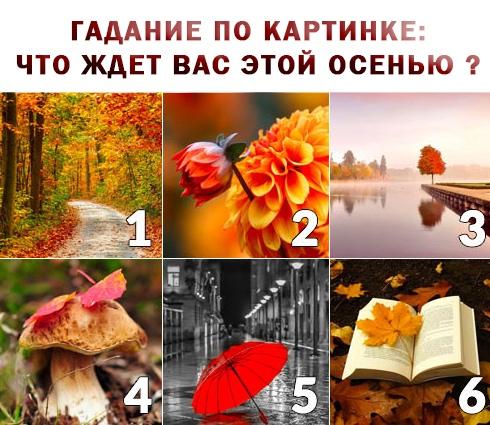 https://pp.userapi.com/c844416/v844416261/dbb9b/my5cKymLGtI.jpg