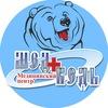 "Медицинский Центр ""Медведь"""