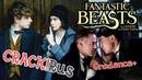 Fantastic Beasts [Crack!Rus.Gradence]