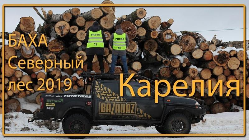 Настоящее дорожное приключение Карелия Баха Северный лес