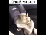 Разгон Nissan GT-R