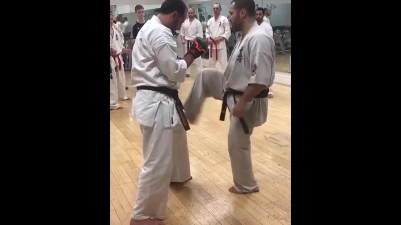 Неожиданная связка пробить слабое место противника в Кёкусинкай карате. Подготовка бойца. vk.com/oyama_mas