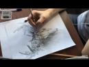 Процесс рисования черепа оленя