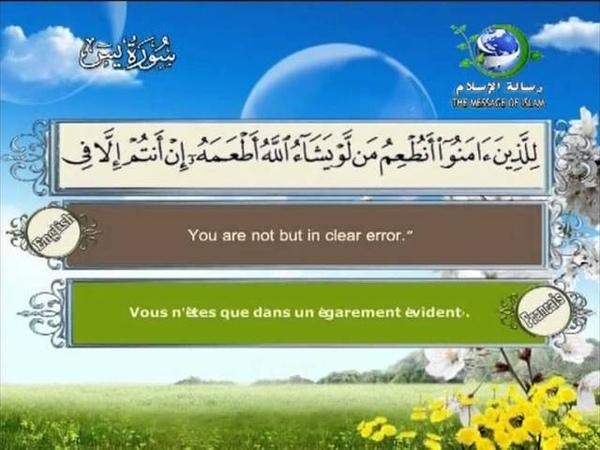 Yassine HQ سورة يس كاملة بجودة ممتازة للشيخ سعد الغ 1575