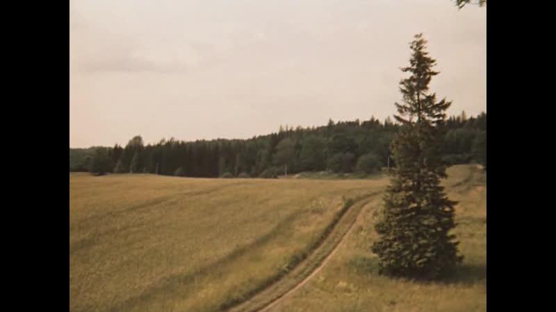 Долгая дорога в дюнах. 6 серия. 1980