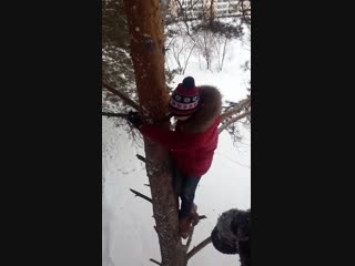 Эти гребанные гуки на деревьях