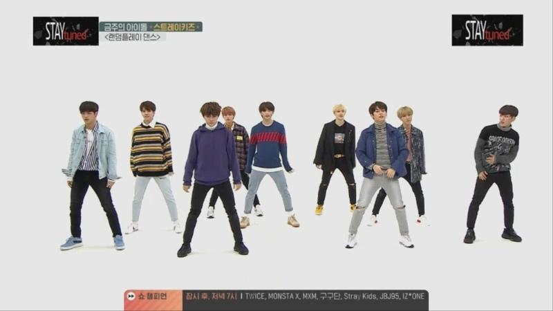 주간아이돌 스트레이키즈 랜덤플레이댄스 Weekly Idol Stray Kids Random Play Dance Cut