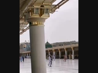 .مَا ضَلَّ صَاحِبُكُمْ وَمَا غَوَىٰ وهذا هو جواب القسم ، وكأنه سبحانه يقول : وإنْ سقط النجم الذي يهدي السائرين ، فنجم محمد ﷺ لا