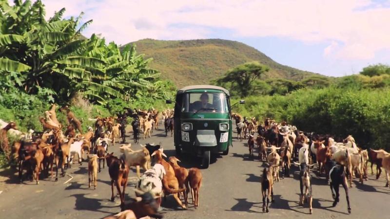 Roo Panes - Open Road