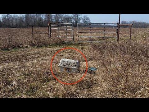 Biker entdeckten eine Kiste in einem Feld - Als sie diese öffneten waren sie fassungslos!