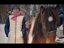 Анастасия Дмитриевна и Мерф. (тестовая обкатка пони)