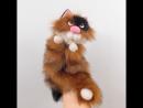 Рыжий кот с белым и чёрным.