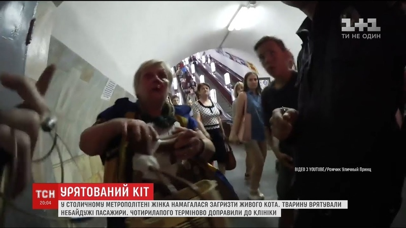 У столичній підземці жінка на очах у людей намагалася загризти кошеня
