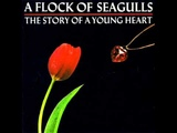 A Flock Of Seagulls - Suicide Day