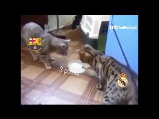 Барса и Реал в этом сезоне