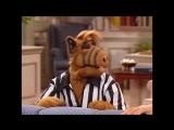 Alf Quote Season 3  Episode 2_Пасхальное