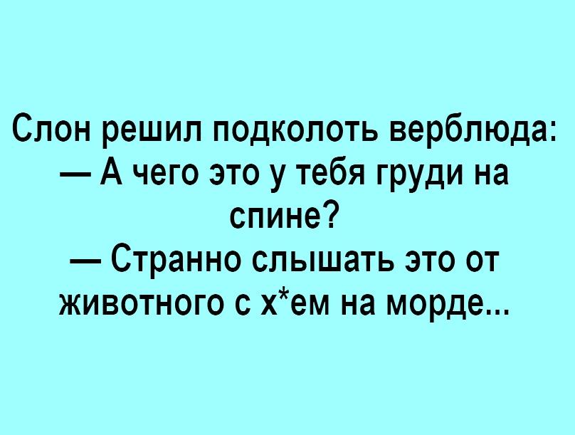 https://pp.userapi.com/c844416/v844416615/d6d99/JID7tpTH77M.jpg