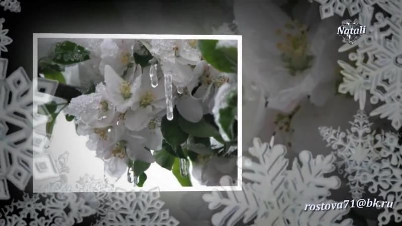 Цветы_под_снегом,_Лариса_Долина