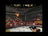 Stone Cold vs The Undertaker 2