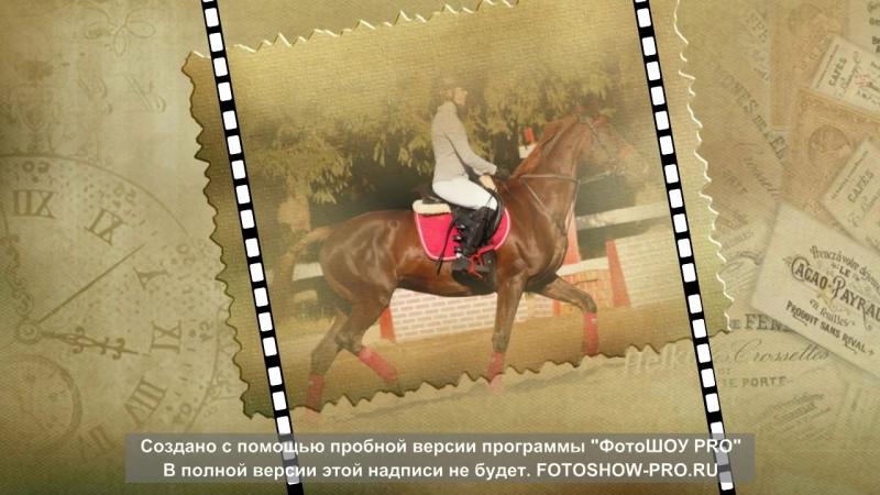кони и анька