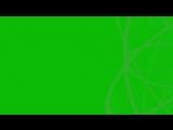 Green Screen Beautiful Effect Color Animation Футаж Красивый Эффект Цветной_HD.mp4