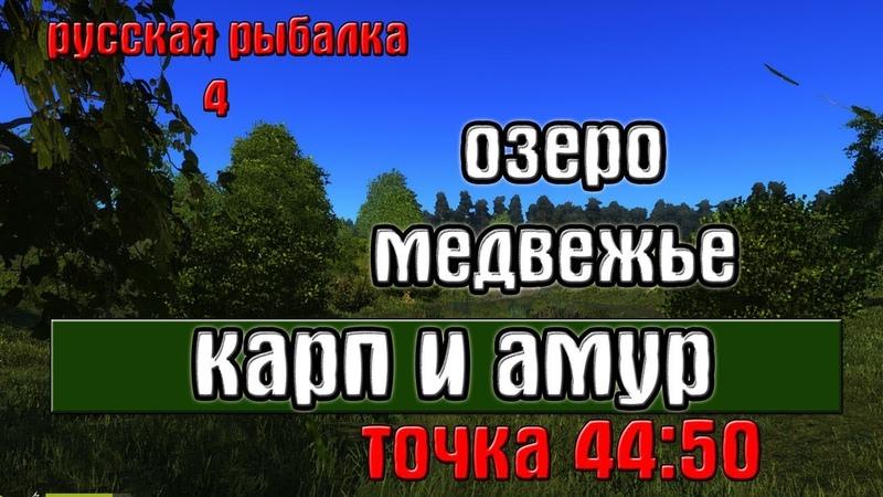 Русская рыбалка 4 рр4 озеро Медвежье Карп и Амур