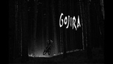 Another day in the Dark- Gojira Project