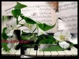 Ledi Di. Пианист - Ричард Клайдерман.