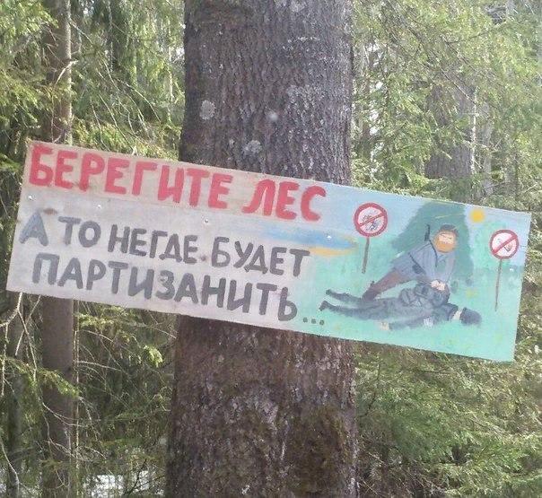 Днем рождения, прикольные картинки про лес с надписями