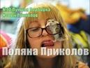 №10 Лучшая Подборка Новых Приколов 2018 The best selection of jokes Glade of Prikolov