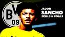 Jadon Sancho 2018-2019 ● Golden Boy ● Crazy Skills Goals ● Borussia Dortmund ● HD
