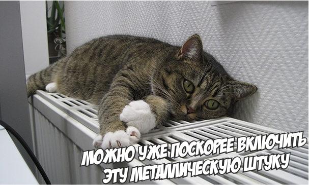 Отопление в Дмитровских квартирах появится до 2 октября