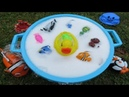 Sea Animals For Kids Learn Ocean Animal Name Learning Colors Beach Toys Turtle Tub Fun