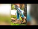 Leg Warmerr||Fashionable,stylish leg warmer, boot cuffs,ankle cuffs crochet designs