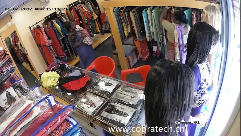 Shoplifters, shoplifting, shoplifting law, shrinkage, source tagging, surveillance system, tamper tags, the retail industry, the